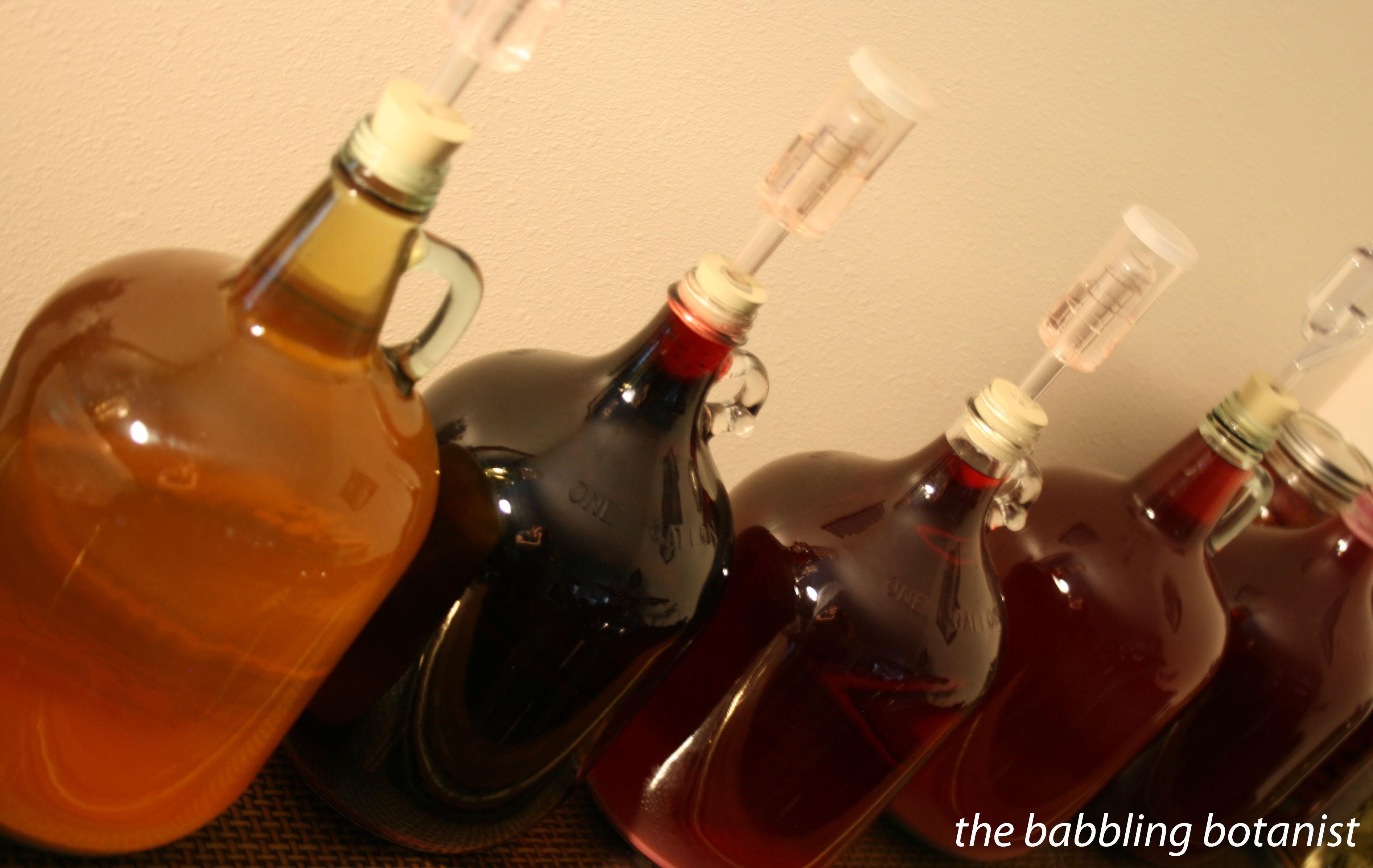 Вино из смородинового варенья и домашнее вино из